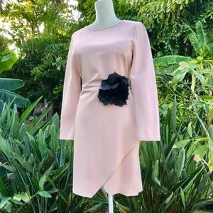 1. State Blush Fitted Dress